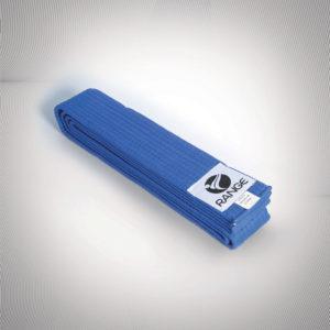 Martial Arts Blue Belt