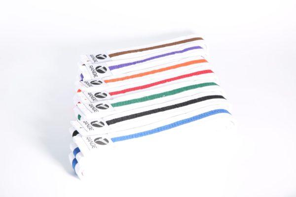 Littel Dragon White Belt with strip