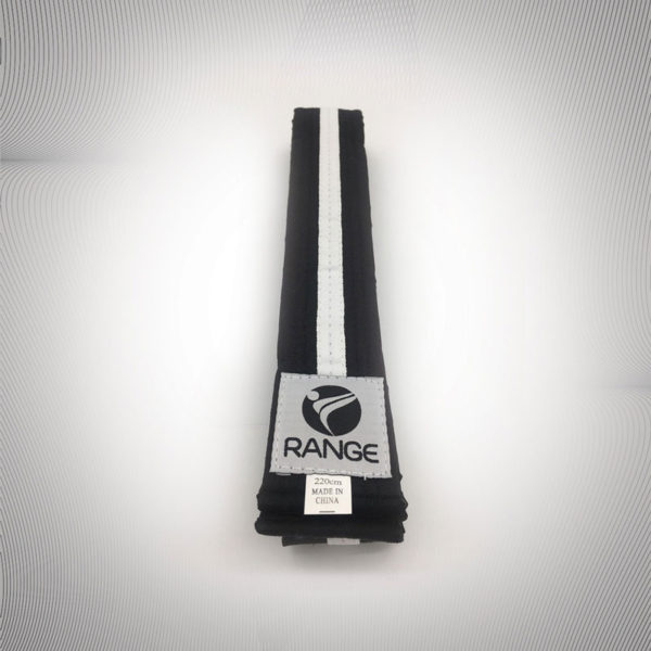 Littel Dragon Black Belt with White strip