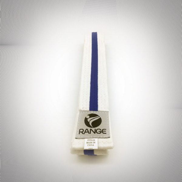 Littel Dragon White belt with purple strip